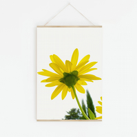 Bright Yellow Flower, Fine Art Photography Print, Various Sizes Available