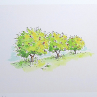 Art print  'Cherry Orchard'