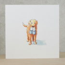 Blank card Dog and Slippers