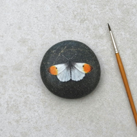 Painted Stone 'Oranged tipped butterfly'