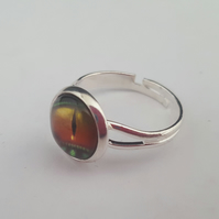 Lizard eye ring - brown