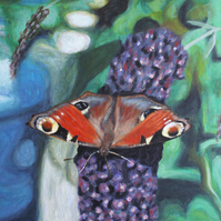 """Peacock Butterfly on Buddleia"" original painting"