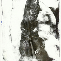 'Steel Feather' - Original one-off monoprint in acrylic unmounted