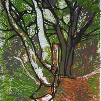 Carstramon Wood, Scotland - Original Hand Pressed Ltd Edition Linocut