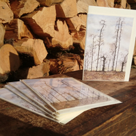 A6 pack of 5 Blank Tree, Woodland Christmas cards - Design, Guardians