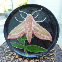 Elephant Hawk Moth Ceramic Plate - Hand Sculpted - by Jacqueline Talbot Designs