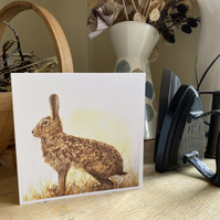 Greetings Card. The Watchful Hare