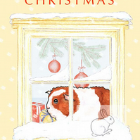 It looks cold out there! - Guinea Pig Christmas Card