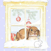 Bunny counting the snowflakes - Christmas Card