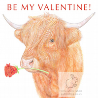 Highland Cow - Valentine Card