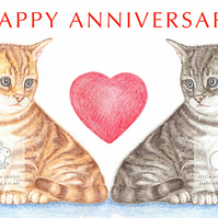 Kittens - Anniversary Card