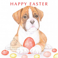 Jake the Boxer - Easter Card