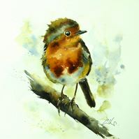 Punk Robin, Original Watercolour Painting.