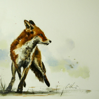 Alert Fox, Original Watercolour Painting.