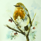 A Gentle Robin, Original Watercolour Painting.
