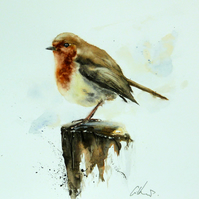 A Robin, Original Watercolour Painting.