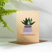 Hello Vera!  Aloe Vera Inspired Blank Illustrated House Plant Greeting Card