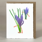 Cornish Saffron Crocus - Original LinoCut Hand Printed card