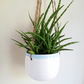 Ceramic hanging planter with white and blue glaze pottery herb pot - gift idea