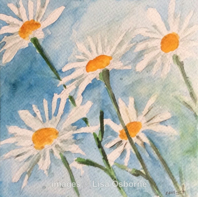 White daisies - original watercolour painting