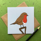 Robin. Greetings card of garden bird. Blank inside.
