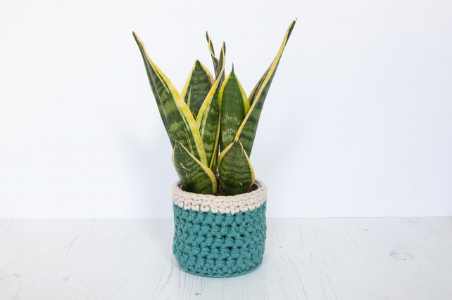 Small plant pot cover in green & cream. Made from recycled cotton.
