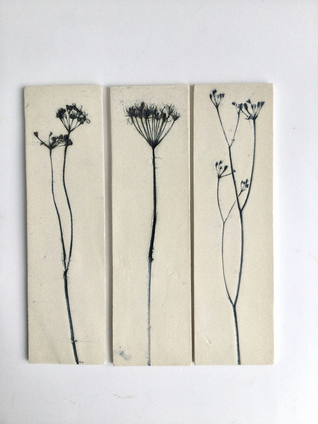 Trio of delicate cow parsley wall hangings
