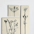 Trio or British wild flower wall pieces
