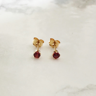 3mm Gold Filled and Red Cubic Zirconia Ear Studs. The Magnificent Minis.