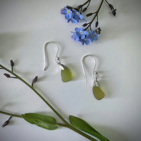 Silver earrings with yellow-green sea glass