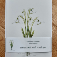 Snowdrops pack of 5 greetings cards with white envelopes