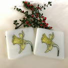 Daffodil Glass Coaster - Set of 2