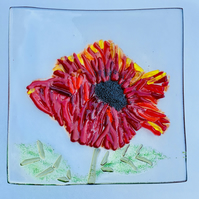 Fused glass textural poppy dish