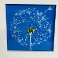 Dandelion fused glass art picture, wall glass art