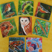 Pack of 5 Pick and Mix Greetings Cards - nature themed on recycled card
