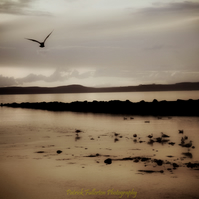 Giclee print, Fine art archival, Photography, Scotland, Largs Ayrshire.