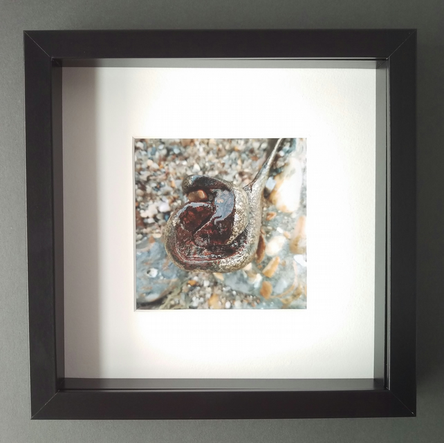 Worn Metal Feature - Up Close Coast Framed Photograph