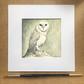 Barn Owl Watercolour Painting