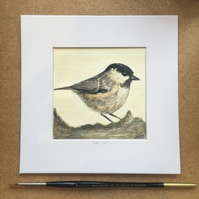 Coal Tit Watercolour Painting
