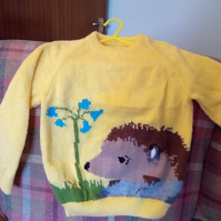 Hedgehog Jumper