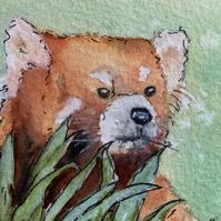 watercolour of a red panda - ACEO - free UK postage