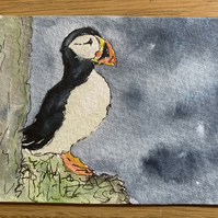 watercolour of a puffin - ACEO - free UK postage