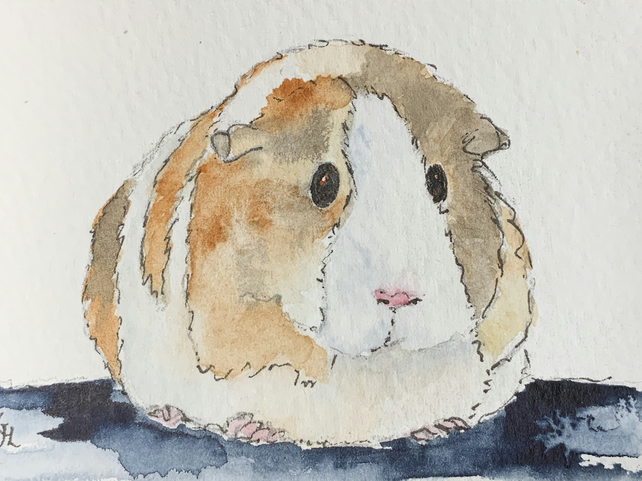 Watercolour of a Guinea Pig ACEO - free UK postage