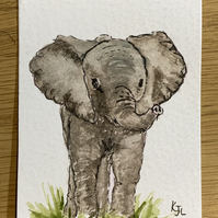 Watercolour of a baby elephant ACEO - free UK postage