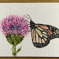 Watercolour of a  butterfly on a thistle ACEO - free UK postage