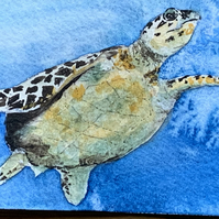 Watercolour of a Turtle ACEO - free UK postage
