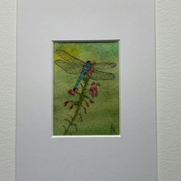 Watercolour of a Dragonfly ACEO - free UK postage