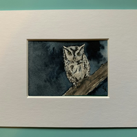 Watercolour of an Owl ACEO - free UK postage