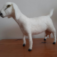 Anglo Nubian Goat sculpture needle felted wool
