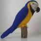 Parrot, ooak,collectable needle felted wool sculpture